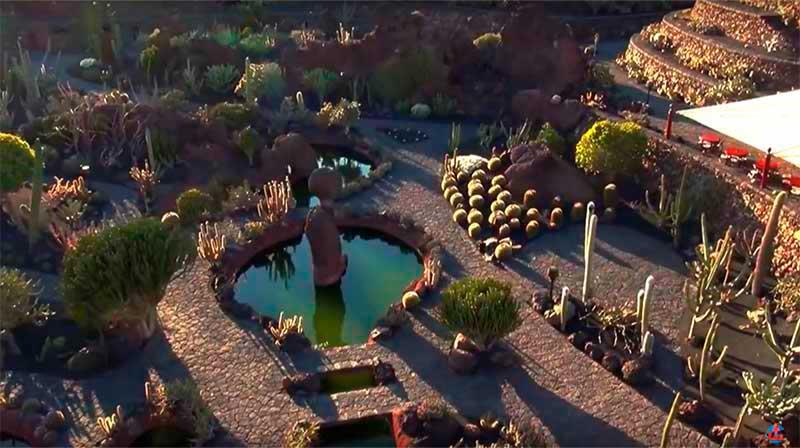 Jardín de Cactus. Descubrir Lanzarote. Autor: CACT Lanzarote
