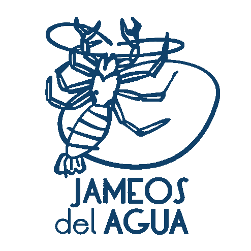 Best places when you visit Lanzarote - Jameos del Agua